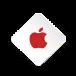 Developers apple